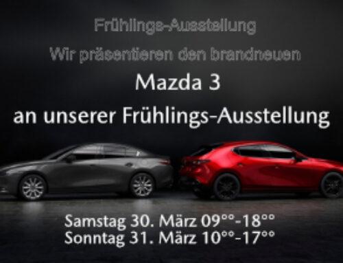 Frühlings Ausstellung